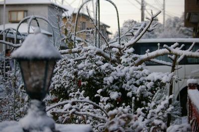 Blogyuki3120124