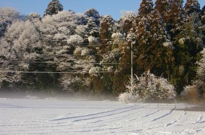 Blogyuki5120124