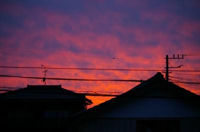 Blogyuuyake120606