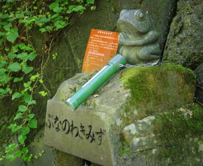 Blogbunanowakimizu