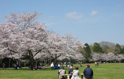Blogizumi150331